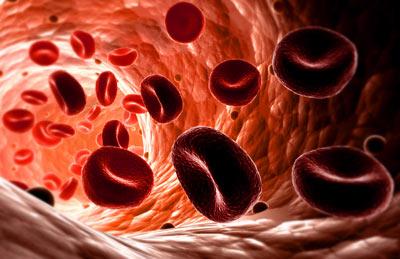 Bloedstagnatie   63